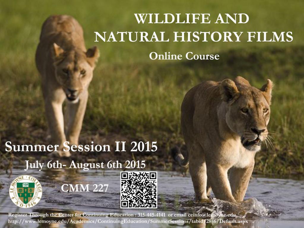 Wildlife CMM Poster_LMC